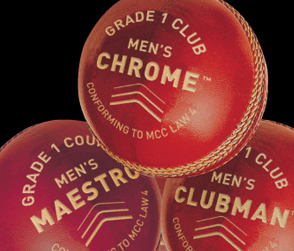 NEW 2018 Cricket Balls