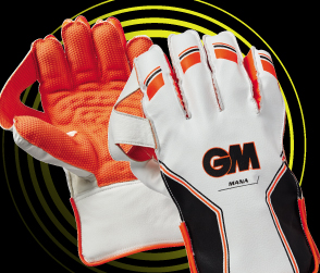 2018 Wicket Keeping Gloves