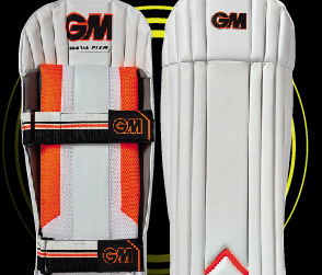 2018 Wicket Keeping Pads