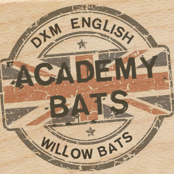 2018 Academy Bats