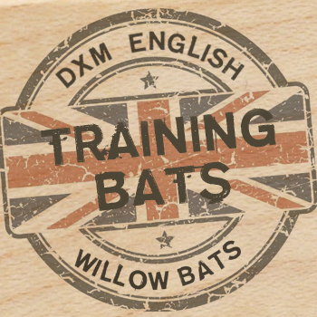 Training Bats
