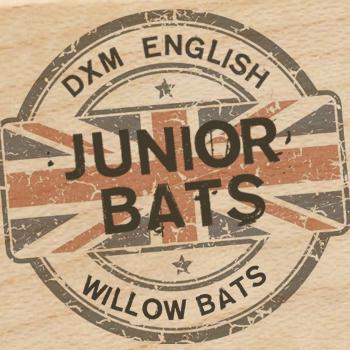 2017 Junior Bats