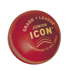 Icon Grade 1 League - Junior