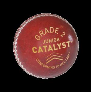 Catalyst Grade 2 - Junior