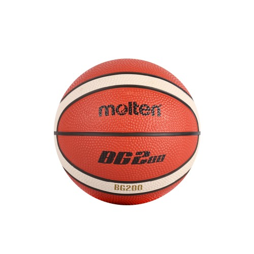 B1G200 Mini Basketball