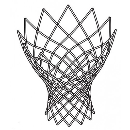 12 Hook Net